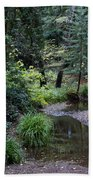 Old Mill Park In Mill Valley Beach Towel