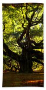 Old Old Angel Oak In Charleston Beach Towel by Susanne Van Hulst