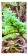 Old Pine Tree 1 Beach Towel