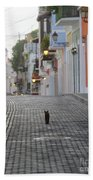 Old Town Alley Cat Beach Towel