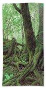 Old Tree Root Beach Towel