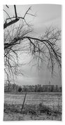 Old Winter Tree Grayscale Beach Towel