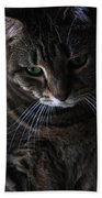 Ole Green Eyes Beach Towel