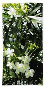 Oleander 2018 Beach Towel
