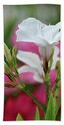 Oleander Casablanca 1 Beach Towel