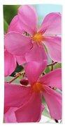 Oleander Maresciallo Graziani 1 Beach Sheet