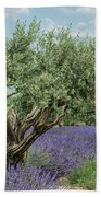 Olive Trees Of Provence Beach Sheet