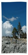 Olmsted Point Pine Rear View Beach Towel