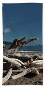 Olympic Peninsula Coast Beach Towel