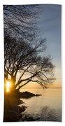 On Fire - Bright Sunrise Through The Willows Beach Towel