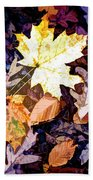 On The Forest Floor Vivid Colors Beach Towel