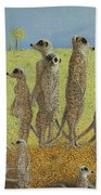 On The Lookout Beach Towel