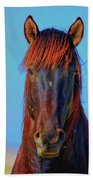 Onaqui Wild Stallion Portrait Beach Towel