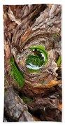Once A Tree Beach Towel