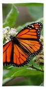 Once Upon A Butterfly 001 Beach Towel