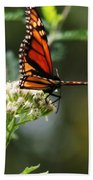 Once Upon A Butterfly 006 Beach Towel