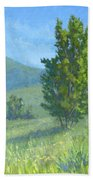 One Fine Spring Day Beach Towel by David King