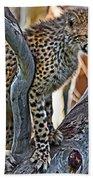One Little Cheetah Sitting In A Tree Beach Towel