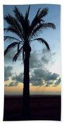 One Palm Beach Towel