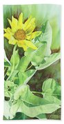 One Rooting In The Sun Beach Towel