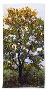 One Tree Hudson River View Beach Towel