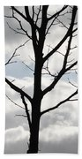 One Winter Tree With Clouds Beach Towel