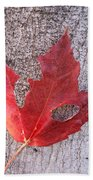 Only One Leaf To Live Beach Towel