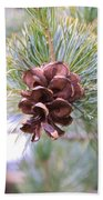 Open Pine Cone Beach Towel