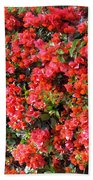 Orange And Colral-pink Flowers 2 Beach Towel