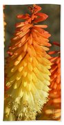 Orange And Gold Flower  Beach Towel