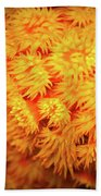 Orange Anemones Beach Towel