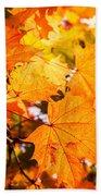 Fall Of Orange Leaves Beach Towel