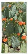 Orange Blossom Cactus  Beach Towel