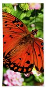 Orange Butterfly Beach Sheet by Valeria Donaldson