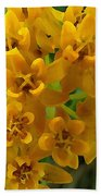 Orange Butterfly Weed Beach Towel by Shelli Fitzpatrick