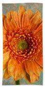 Orange Color Stroke Gerber Daisy Beach Towel