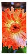 Orange Daisy Beach Towel
