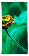 Orange Flower II Beach Sheet