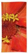 Orange Flower Macro Beach Towel