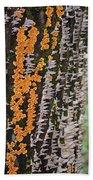 Orange Fungus Beach Towel