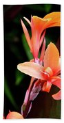 Orange Gladiolus Beach Towel