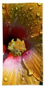 Orange Hibiscus II With Water Droplets Beach Towel