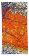 Orange Lichen Beach Towel by Heiko Koehrer-Wagner