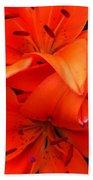 Orange Lily Closeup Digital Painting Beach Towel
