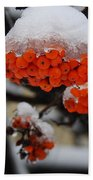 Orange Mountain Ash Berries Beach Towel