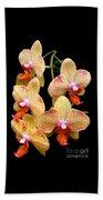 Orange Orchid Phalaenopsis Beach Towel