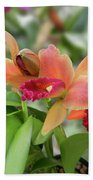 Orange Orchids 2 Beach Towel