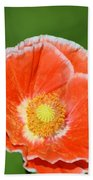 Orange Poppy 2 Beach Towel