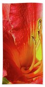 Orange-red Day Lily Beach Towel