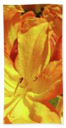 Orange Rhodies Flowers Art Rhododendron Baslee Troutman Beach Towel